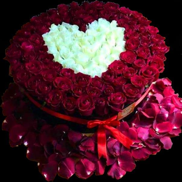 باکس اسفنج لاکچری گل رز هلندی