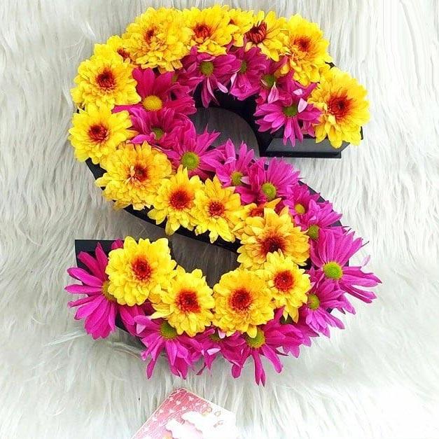 باکس گل حروف انگلیسی با گل کریانزا و میخک S