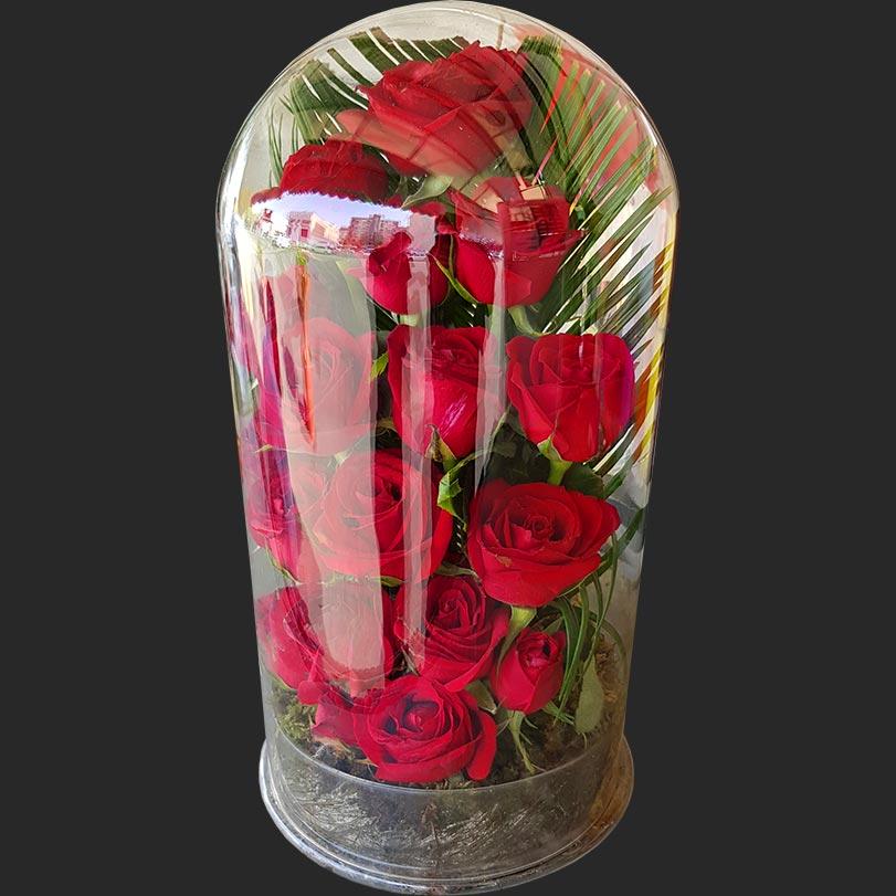 باکس گل شیشه ای لاکچری بزرگ رز قرمز 15 شاخه استوانه ای