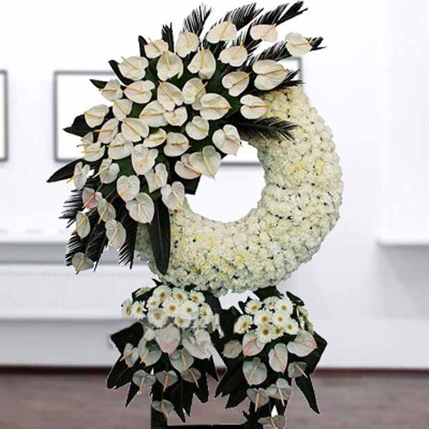 تاج گل آنتریوم جربرا سفید