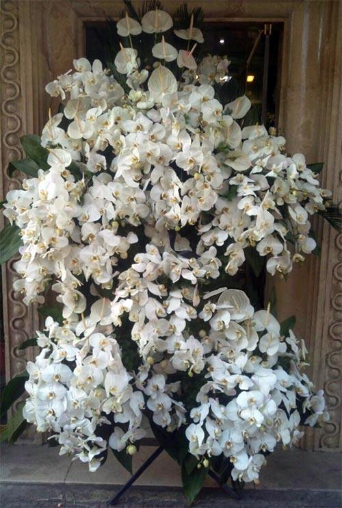 تاج گل پایه دار سوپر لوکس ارکیده فلانوپسیس آنتوریوم