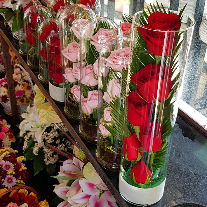 تنگ گل شیشه ای استوانه ای رز قرمز 6 شاخه ارزان
