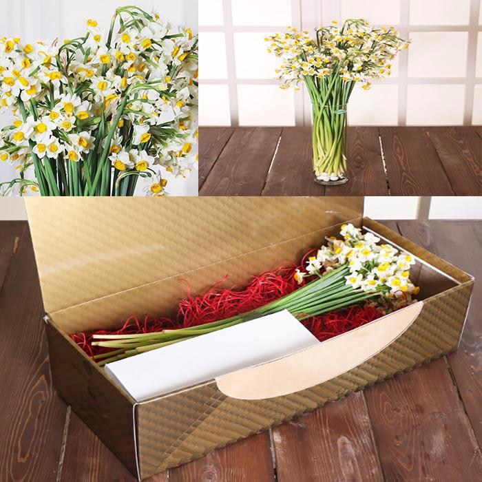 جعبه گل نرگس کادو دسته ای