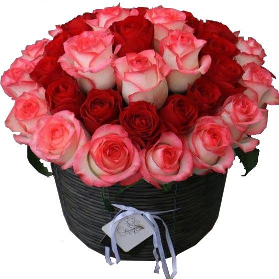 سبد گل رز قرمز و صورتی