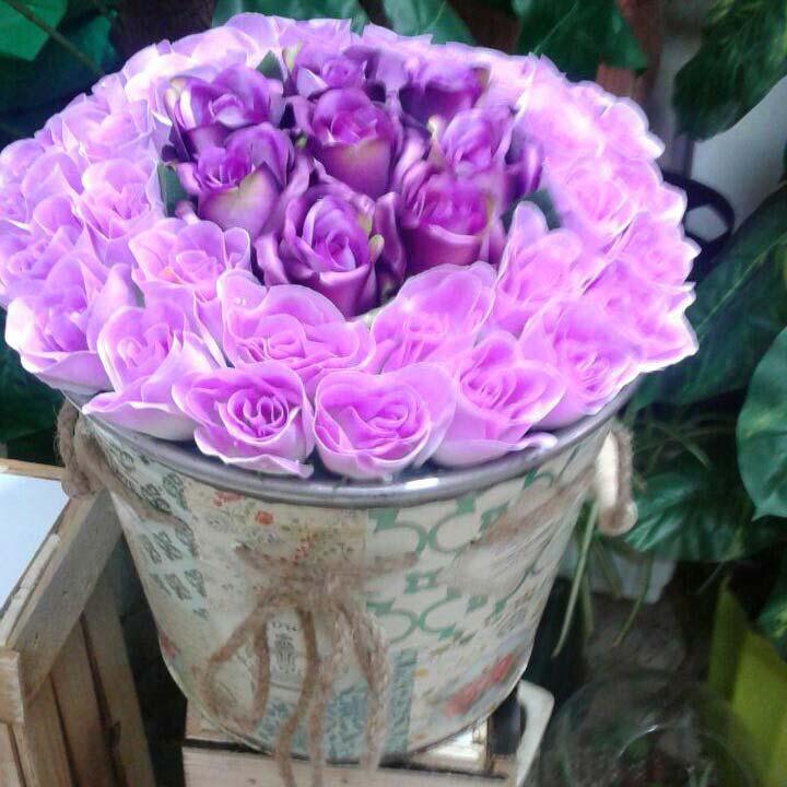 سطل گل رز بنفش ارغوانی طبیعی فانتزی رنگی