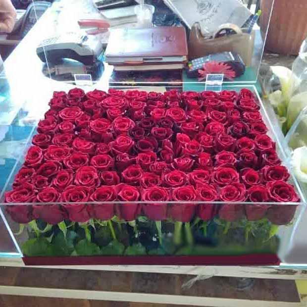 فروش گل رز هلندی با باکس